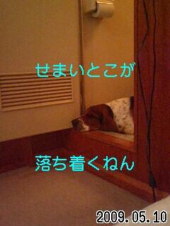 090510_6.jpg