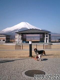 シアターひびきと富士山