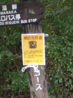 091010_熊出没