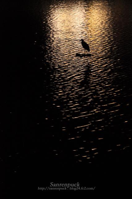 孤独な静寂