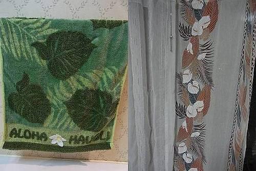 hawaii (7)