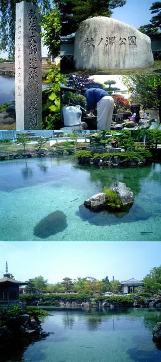 松山:杖ノ淵公園Ⅰ.jpg