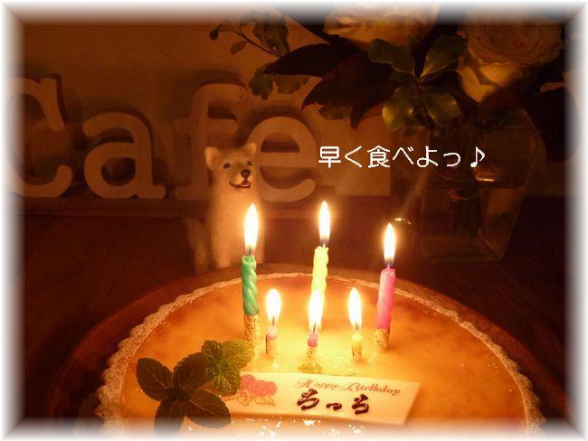 P1000809早くケーキ