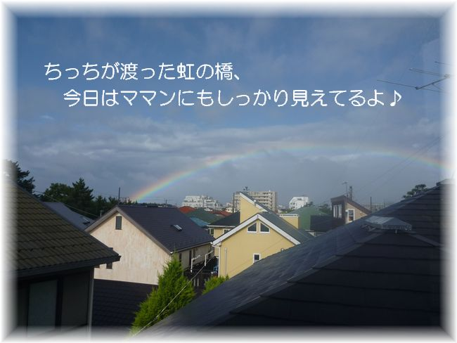 P1000859虹の橋