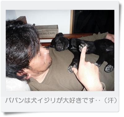 ◆P1040159-①