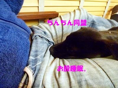 ■P1050126-⑭