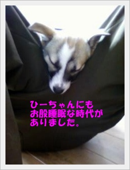 ■画像-0019-⑮