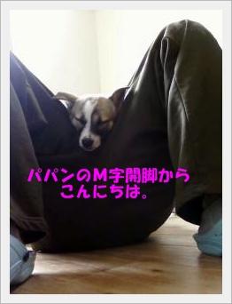 ■画像-0020-⑯