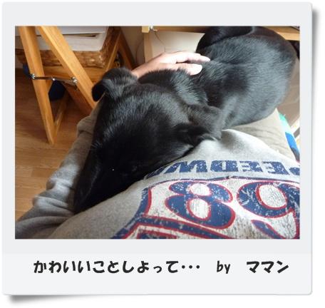 ◆P1050169-③