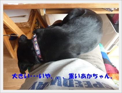 ◆P1050161-②