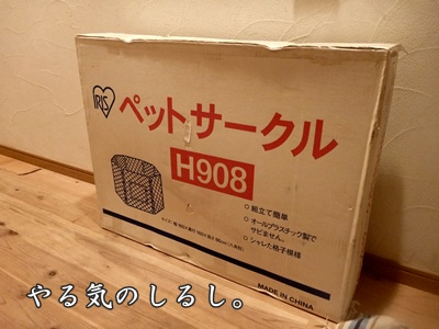 ★P1050563-①