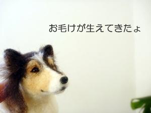 ☆P1050634