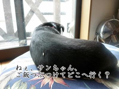 ◆P1050574-②