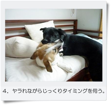 ☆P1060031-④正