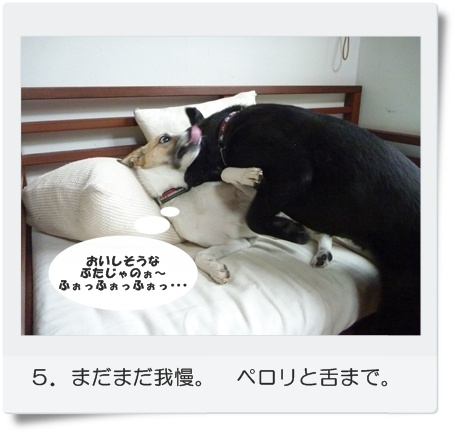 ☆P1060028-⑤