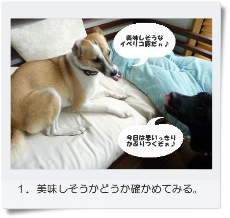 ☆P1060041-①
