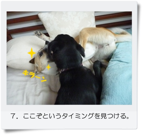 ☆P1060020-⑦