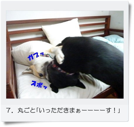 ☆P1060030-⑧