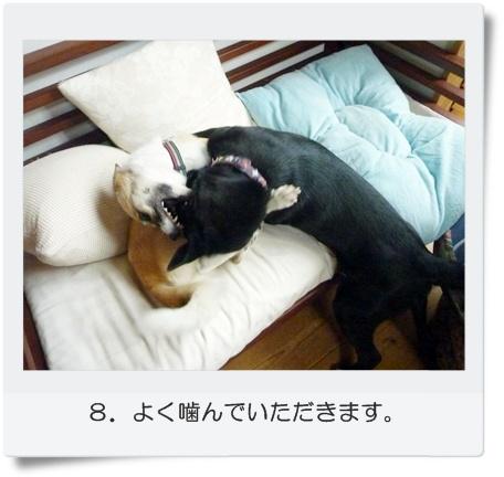 ☆P1060040-⑧