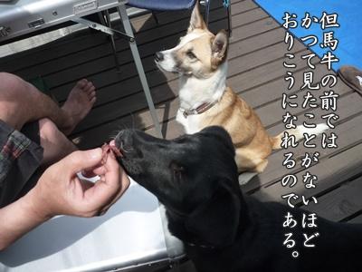 ☆P1060258-②