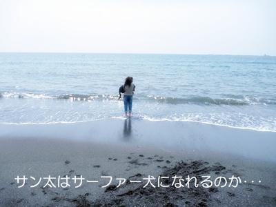 ■P1060247-①