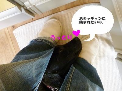 ◆P1060325-④