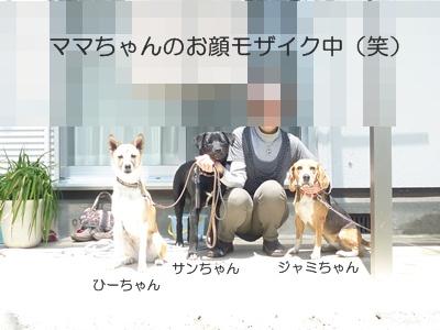 ★P1060190-⑤
