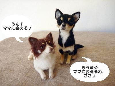 ◆P1060892-④