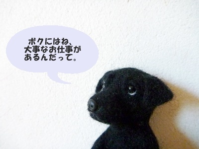 ☆P1070204①