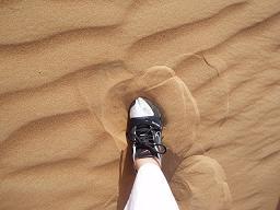 desert090226_12.jpg