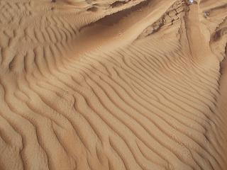 desert090226_2.jpg