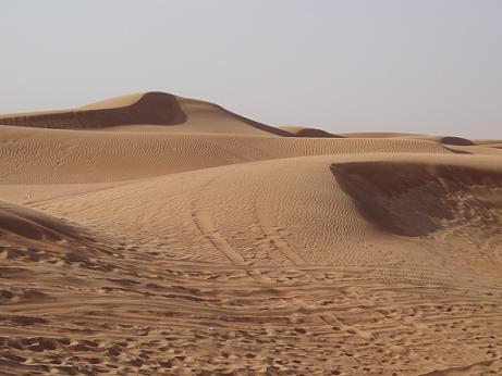 desert090226_3.jpg