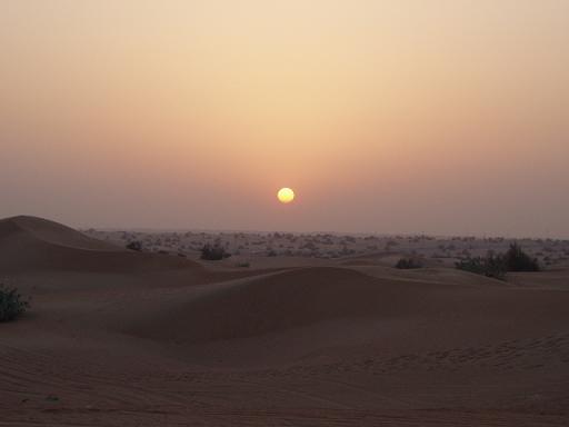 desert090226_8.jpg
