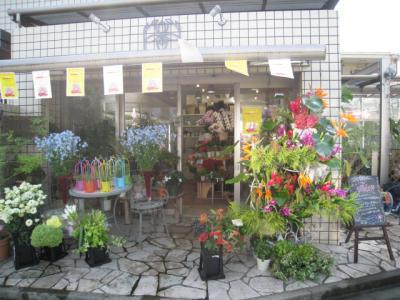 撮影 3 花屋全体図