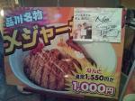 20090919_ゴーゴーカレー丼丼-004