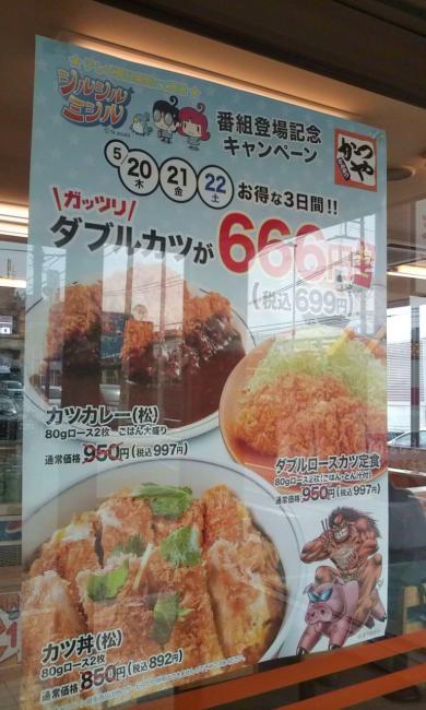 20100522_かつや相模原店-003