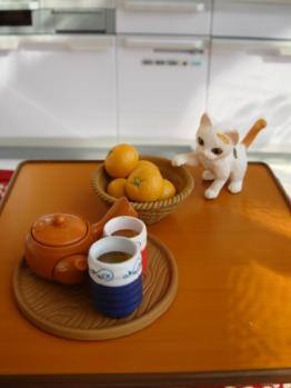 momoko in kotatsu4