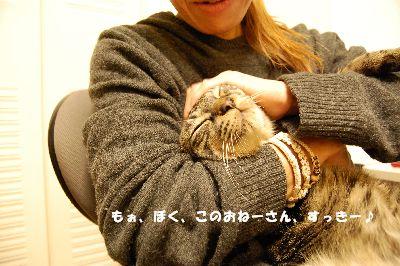 20081130kotetsu5.jpg