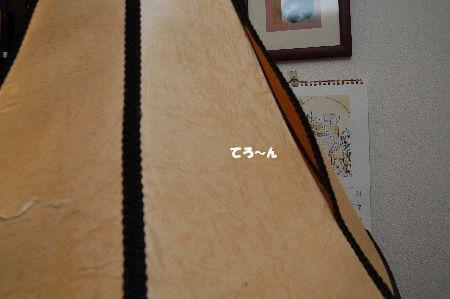 20091105kotetsu2.jpg