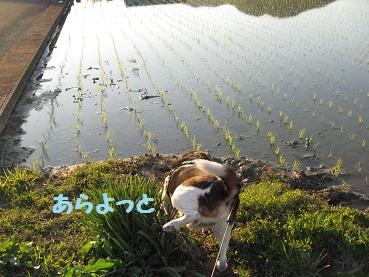 002_20120326185725.jpg