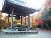 花の寺 勝持寺