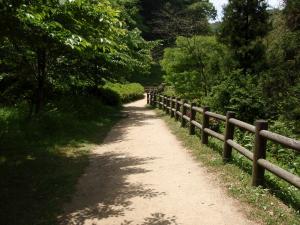 石見銀山・道2