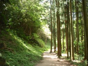 石見銀山・道3