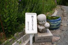 090614kikyou17.jpg