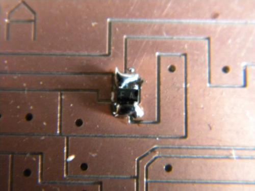 Nm-DSCN0764_20100402112546.jpg