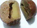 黒糖入り スイートポテトパン