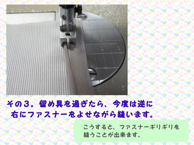 2303293.jpg