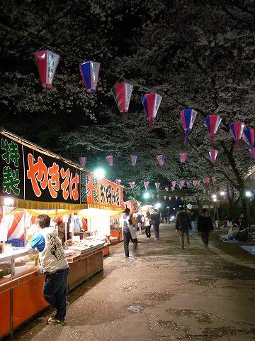 喜多院の夜桜 010