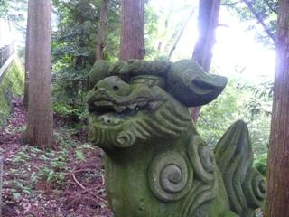白山ひめ神社の狛犬