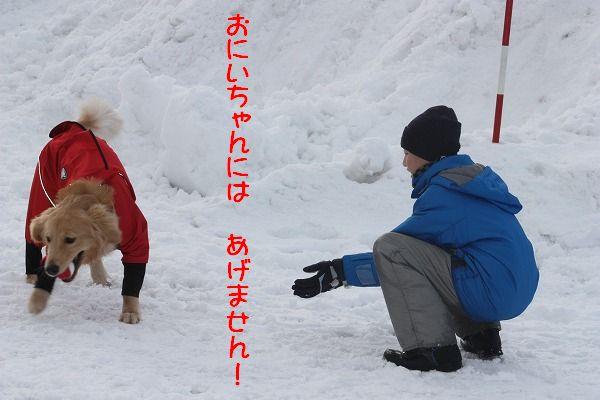 2011-12-31-017.jpg